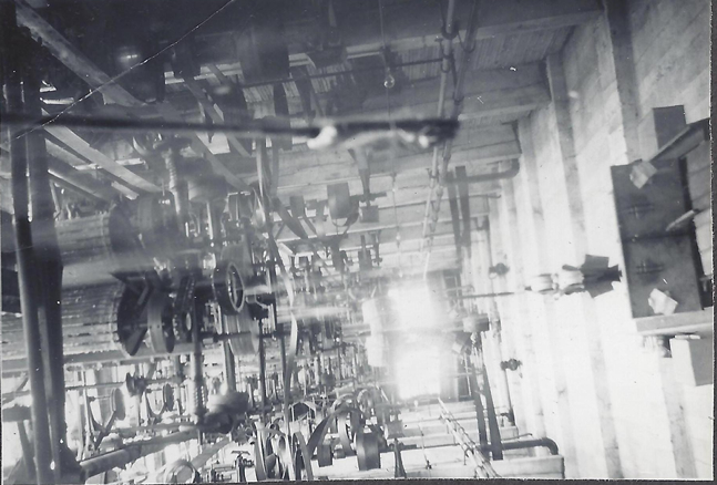 May 1948 d