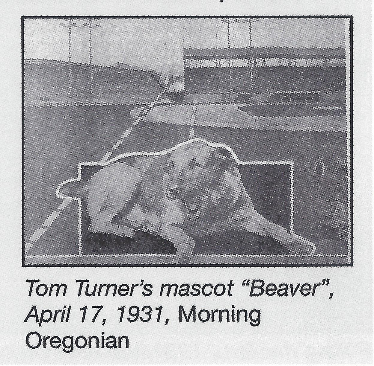 beaver-the-mascot
